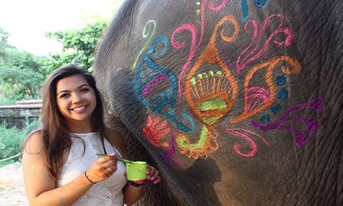 Elephant-Painting-In-Jaipur